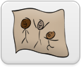 DrawingBurrow: New Posts